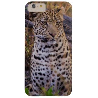Coque iPhone 6 Plus Barely There Séance de léopard, Botswana, Afrique