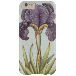 Coque iPhone 6 Plus Barely There Trois variétés d'iris imberbes de Rhizomatous