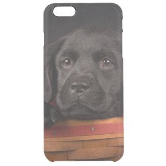 Coque iPhone 6 Plus Chiot noir de labrador retriever dans un panier