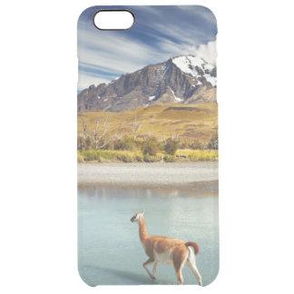Coque iPhone 6 Plus Guanaco traversant la rivière en Torres del Paine