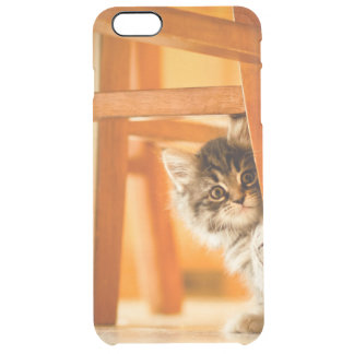 Coque iPhone 6 Plus Kitty tenant la jambe de chaise