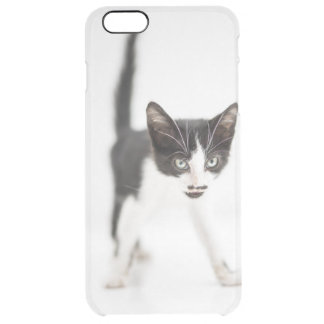 Coque iPhone 6 Plus Petit chat