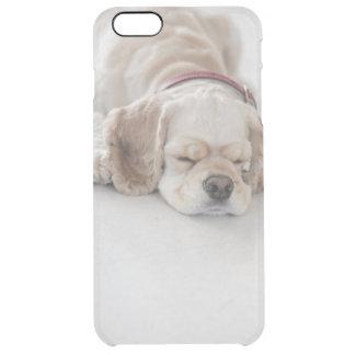 Coque iPhone 6 Plus Sommeil de chien de cocker