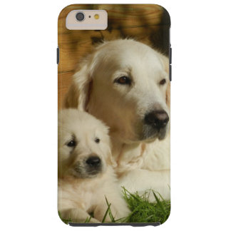 Coque iPhone 6 Plus Tough Chiens crèmes de golden retriever