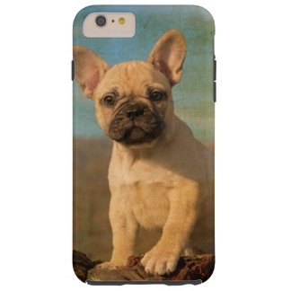 Coque iPhone 6 Plus Tough Chiot mignon de bouledogue français, Phonecase