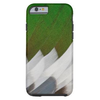Coque iPhone 6 Tough Abrégé sur coloré plume de canard