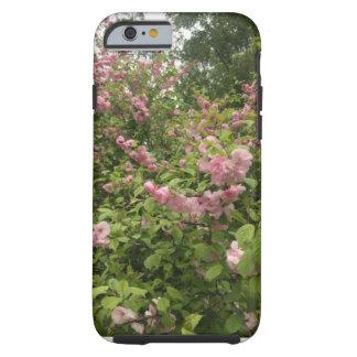 Coque iPhone 6 Tough Cas de téléphone de rosier