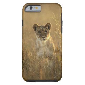 Coque iPhone 6 Tough Parc national de Hwange, Zimbabwe