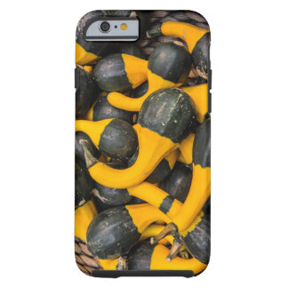 Coque iPhone 6 Tough Salamandre de couleur