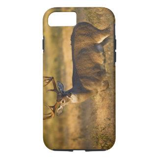 Coque iPhone 7 adulte Blanc-coupé la queue de cerfs communs