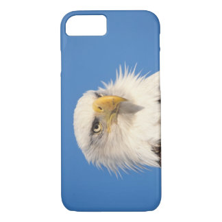 Coque iPhone 7 aigle chauve, leucocephalus de Haliaeetus, fin,