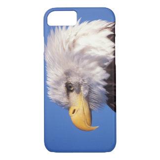 Coque iPhone 7 aigle chauve, leucocephalus de Haliaeetus, fin, 2