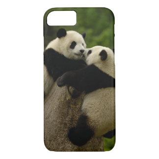 Coque iPhone 7 Bébés de panda géant (melanoleuca d'Ailuropoda)