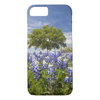 Coque iPhone 7 Bluebonnets de Texas (texensis de lupinus) et