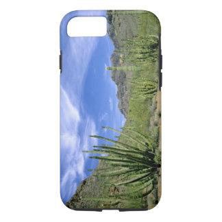 Coque iPhone 7 Cactus de désert au monument national de tuyau