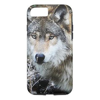 Coque iPhone 7 Cas de l'iPhone 7 de loup gris