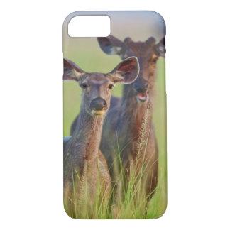 Coque iPhone 7 Cerfs communs de Sambar dans les prés, parc
