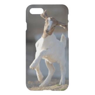 Coque iPhone 7 Chèvre d'enfant jouant en terre