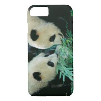 Coque iPhone 7 Deux pandas mangeant le bambou ensemble, Wolong,