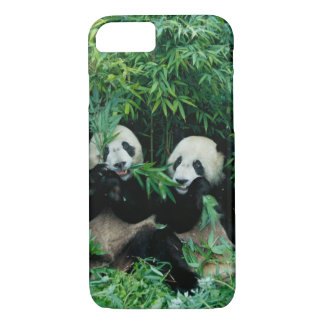Coque iPhone 7 Deux pandas mangeant le bambou ensemble, Wolong, 2