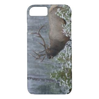 Coque iPhone 7 Élans de Taureau dans appeler de neige, bugling,