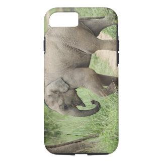 Coque iPhone 7 Éléphant de bébé suivant la mère, Corbett