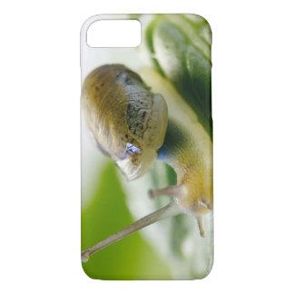 Coque iPhone 7 Escargot de jardin sur le radis, la Californie