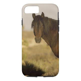 Coque iPhone 7 Étalon sauvage de mustang, troupeau de Wheeler