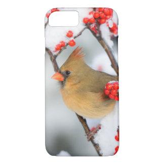 Coque iPhone 7 Femelle cardinale du nord sur le Winterberry