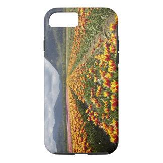Coque iPhone 7 Ferme de tulipe près d'Agassiz,