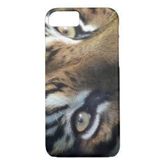 Coque iPhone 7 Fermez-vous d'un tigre de Sumatran de mâle adulte