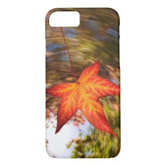 Coque iPhone 7 Feuille en baisse d'un arbre en automne
