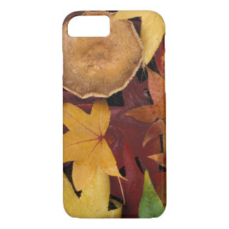 Coque iPhone 7 Feuille et champignon de chute