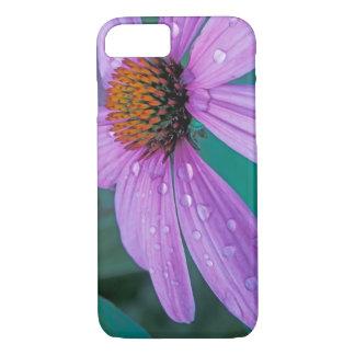 Coque iPhone 7 Fleur pourpre de cône avec des baisses de l'eau