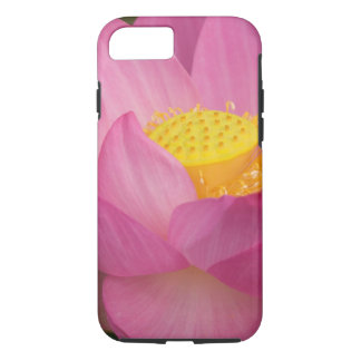 Coque iPhone 7 Franklin OR, jardin de l'eau de Perry, Lotus 2
