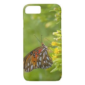 Coque iPhone 7 Fritillaire de Golfe (vanillae d'Agraulis)