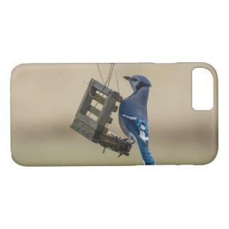 Coque iPhone 7 Geai bleu de oscillation