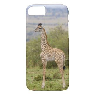 Coque iPhone 7 Girafe de masai (camelopardalis 2 de Giraffa