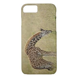 Coque iPhone 7 Girafe de masai de bébé, camelopardalis de Giraffa