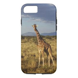 Coque iPhone 7 Girafe réticulée, camelopardalis 2 de girafe