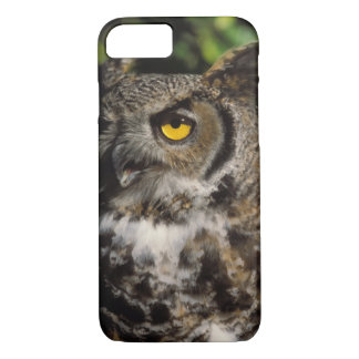 Coque iPhone 7 grand hibou à cornes, varia de Stix, à Anchorage