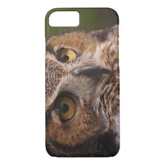Coque iPhone 7 Grand hibou à cornes, virginianus de Bubo