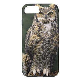 Coque iPhone 7 Grand hibou à cornes (virginianus de Bubo), plein