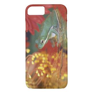 Coque iPhone 7 Grenouille et réflexions parmi des fleurs. Crédit