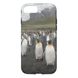 Coque iPhone 7 Île du sud de la Géorgie, port d'or. Pingouin de