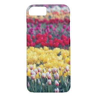 Coque iPhone 7 Jardin d'affichage de tulipe dans la vallée de