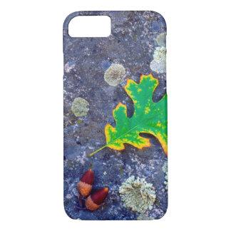 Coque iPhone 7 La feuille et les glands de chêne sur un lichen