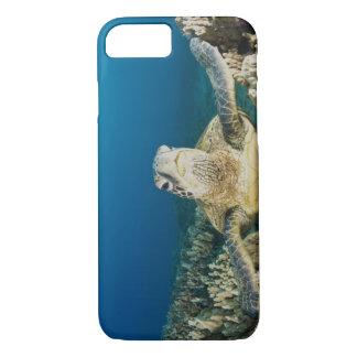 Coque iPhone 7 La tortue de mer verte, (des mydas de Chelonia),
