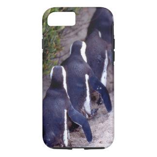 Coque iPhone 7 L'Afrique du Sud, ville de Simons. Suiviste.