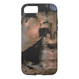 Coque iPhone 7 L'Afrique, Kenya, masai Mara. Hippopotames communs